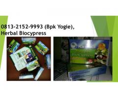 Obat Biocypress Herbal