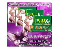 FRUITPLANT HERBAL PELANGSING WA 081316077399/ E3239983