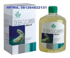 DI SEA CUCUMBER - JELLY GAMAT